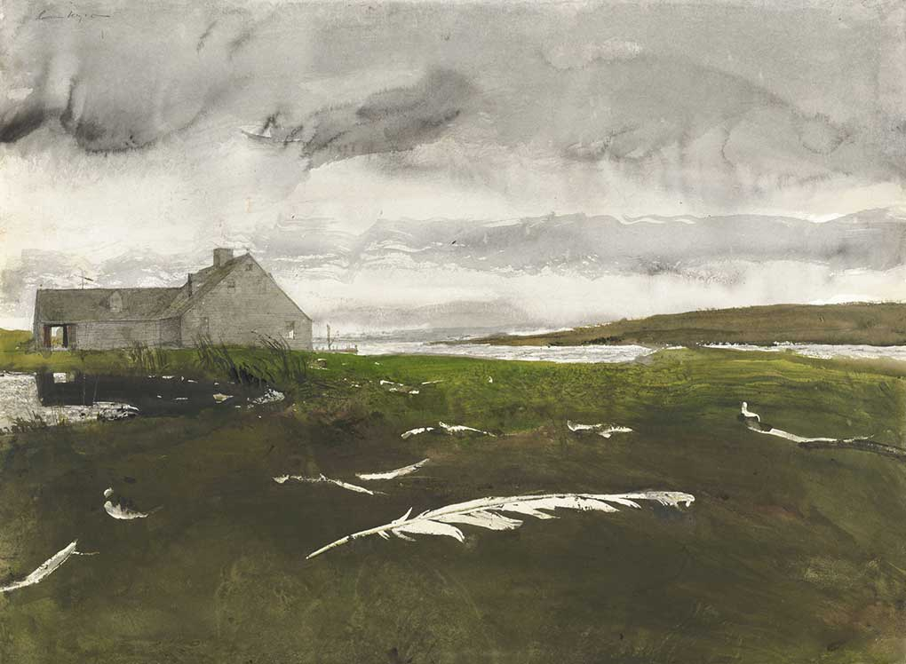 Andrew Wyeth, Airborne Study, 1996, watercolor on paper.