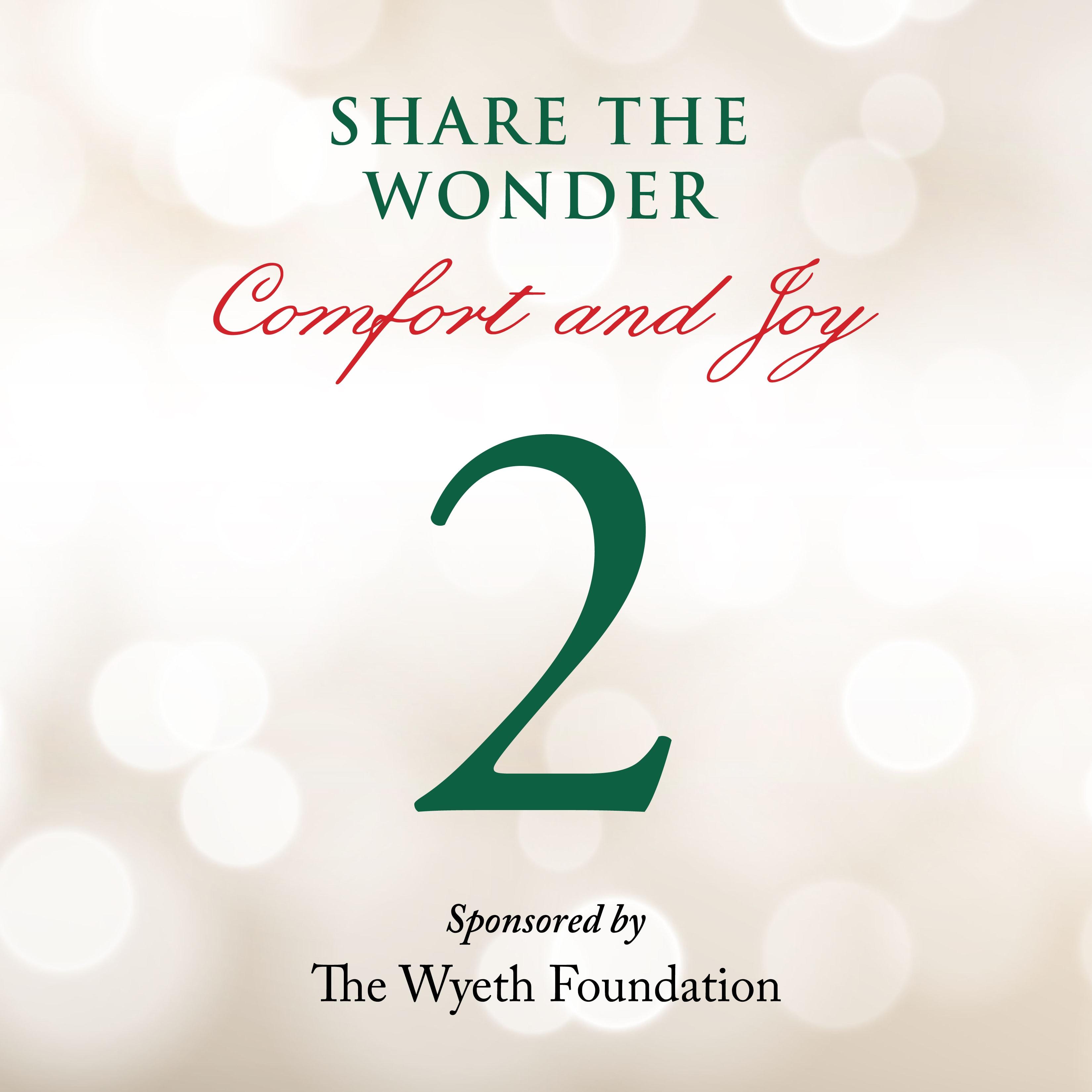 Day 2 of Share the Wonder: November 29