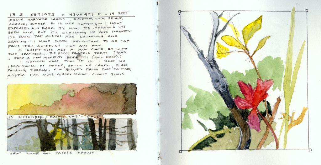 Sherrie York Field Sketching